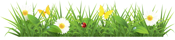 Grass Free PNG Image Download 17