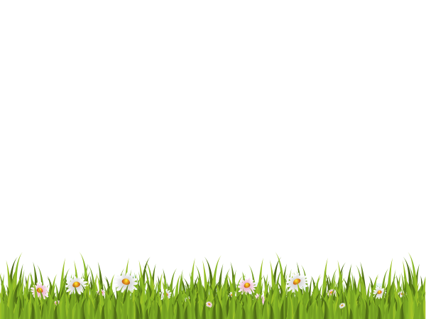 Grass Free PNG Image Download 20