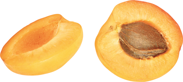 HD Quality Apricot Png