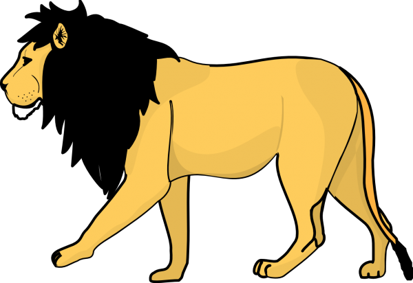 Lion PNG Free Download 12