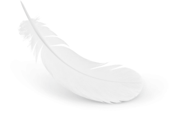 Milky White Feather Download Png Images Download Milky White Feather Download Pictures Download Milky White Feather Download Png Vector Stock Images Free Png Download