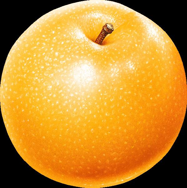 Orange color Apple Png