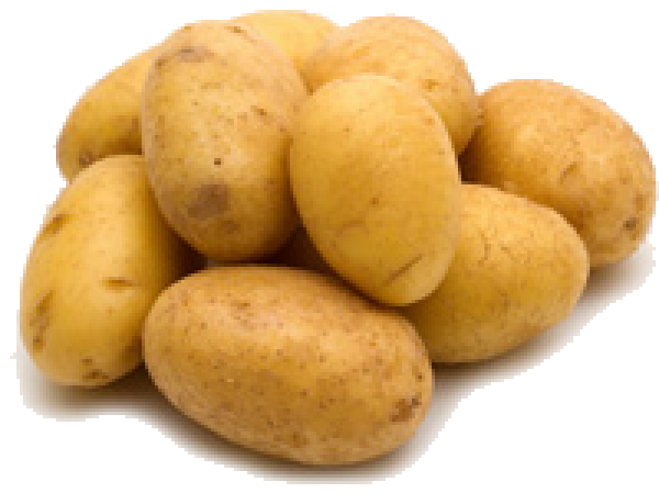 Potato PNG Free Download 15