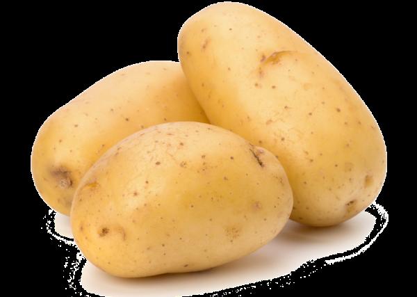 Potato PNG Free Download 4