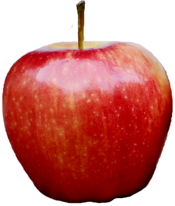 Red Kashmir Apple Png Free Download