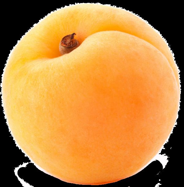 Round Apricot