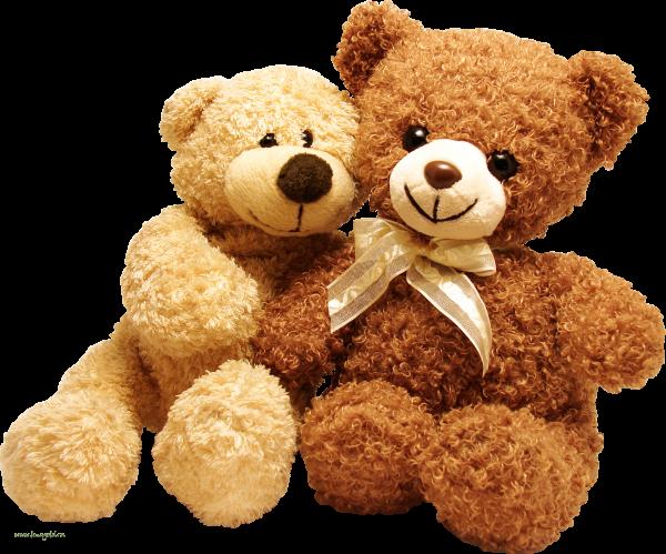 Two Cute Png Teddy Bears