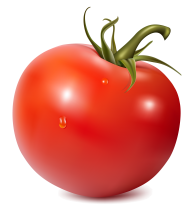 Tomato PNG Free Download 1