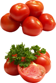 Tomato PNG Free Download 11