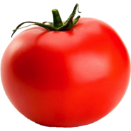Tomato PNG Free Download 2