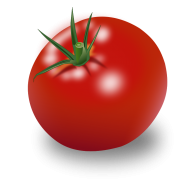 Tomato PNG Free Download 21