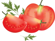 Tomato PNG Free Download 25