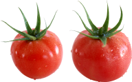 Tomato PNG Free Download 26