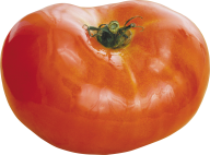 Tomato PNG Free Download 29