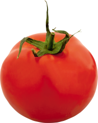 Tomato PNG Free Download 4