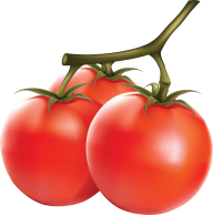 Tomato PNG Free Download 6