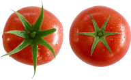 Tomato PNG Free Download 9