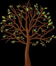 Tree Illustrator