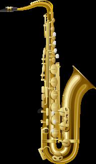 Trumpet PNG Free Download 13