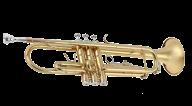 Trumpet PNG Free Download 29