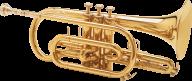 Trumpet PNG Free Download 30