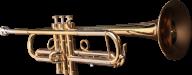 Trumpet PNG Free Download 9