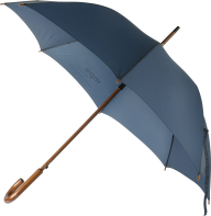 Umbrella PNG Free Download 10
