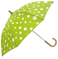 Umbrella PNG Free Download 8