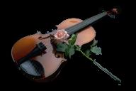 Violin PNG Free Download 11