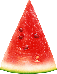 Watermelon PNG Free Download 12