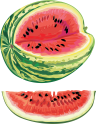 Watermelon PNG Free Download 17