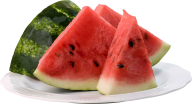 Watermelon PNG Free Download 18