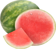 Watermelon PNG Free Download 20