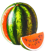 Watermelon PNG Free Download 21