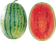 Watermelon PNG Free Download 29