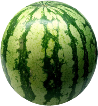 Watermelon PNG Free Download 3