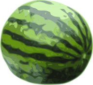 Watermelon PNG Free Download 4