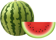 Watermelon PNG Free Download 5