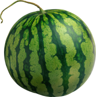 Watermelon PNG Free Download 7
