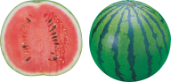 Watermelon PNG Free Download 9