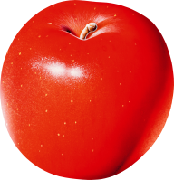 Waxed Apple Png