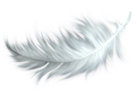 White Feather Png Download