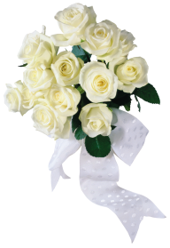 White Roses PNG Free Download 15