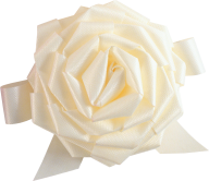White Roses PNG Free Download 5