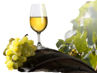 Wine PNG Free Download 15