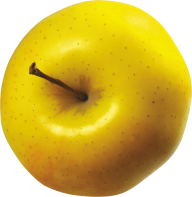 Yellow Apple Top View Png