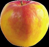 Yellowish Apple Png