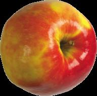 Yellowish Round Apple Png